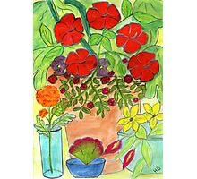 Hibiscus Pot Photographic Print