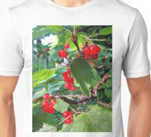 Red currants in the solar bath Unisex T-Shirt