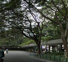 Charter Garden Hong Kong by cadellin