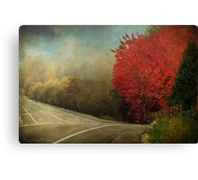 Living  Canvas Print