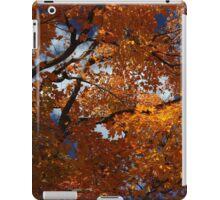 I Love Fall Orange iPad Case/Skin
