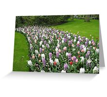 March of the Flowers. Greeting Card