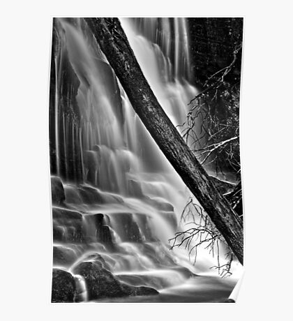 Lower Lilydale Falls Poster