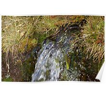 Alpine drainage Poster