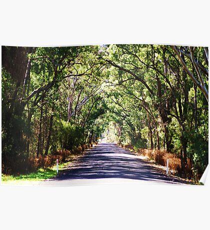 Road To Mount Kaputar, NSW Australia Poster