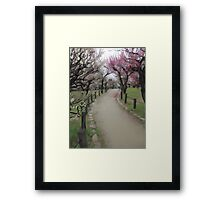 Osaka Blossoms Framed Print