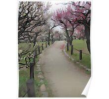 Osaka Blossoms Poster