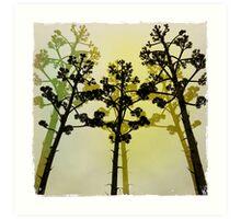 Plant life at Aldinga Beach Art Print