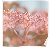 dreamy floral abstract Poster