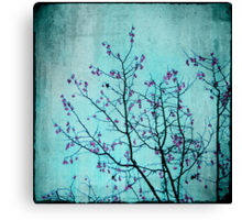 pink berries Canvas Print