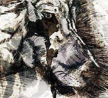 Cry Wolf by Jennifa