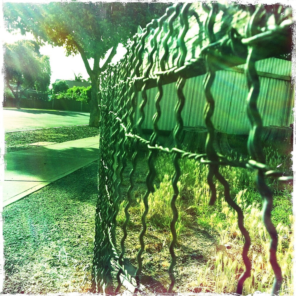 Old wire fence by Jenny Clift