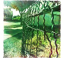 Old wire fence Photographic Print