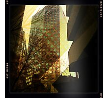 Surrounded by highrise buildings Photographic Print