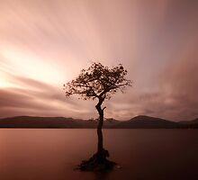 Milarrochy Bay Sunset by Maria Gaellman