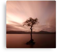 Milarrochy Bay Sunset Canvas Print