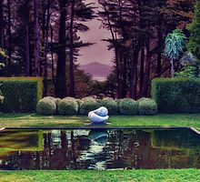 Reflecting Pond, Larnach Castle by Kris Montgomery