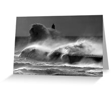 Wild Roker Greeting Card