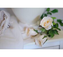 Roses on Display Photographic Print