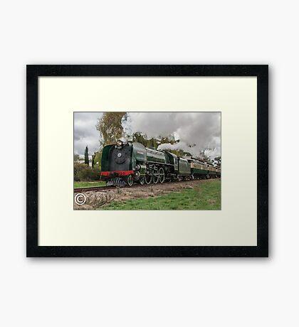 Stream Ranger - Mt Barker Framed Print