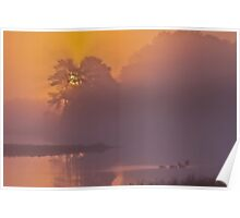 Sunrise at Black Duck Pool Poster