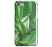 Buds iPhone Case/Skin