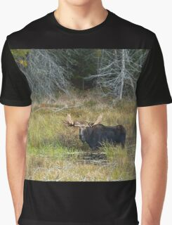Bull Moose, Algonquin Park Graphic T-Shirt