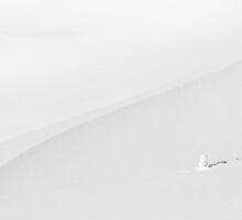 Little Snowman by Catalin Pomeanu
