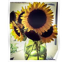 Sunflowers in Green Glass Poster