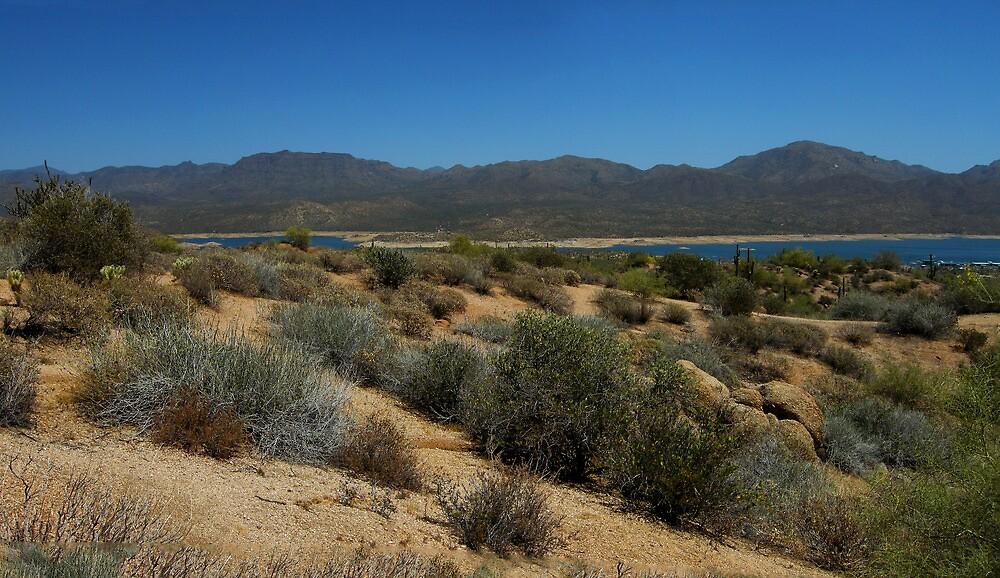 Bartlett Lake Panorama by John  Kapusta
