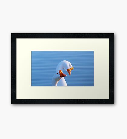 Silly Goose! Framed Print
