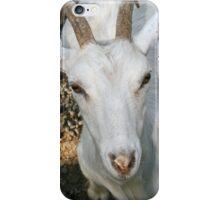 White Billy Goat iPhone Case/Skin