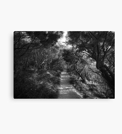 True nature  Canvas Print