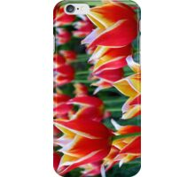 Tulips 3 iPhone Case/Skin