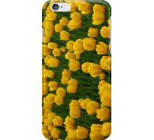 Tulips 2 iPhone Case/Skin