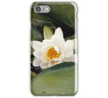 Floating Lily iPhone Case/Skin