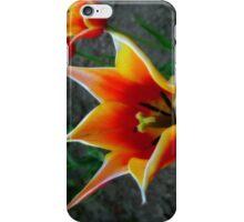 Tulips 4 iPhone Case/Skin