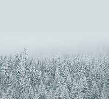 White Forest by Orce Vasilev