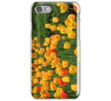 Tulips 6 iPhone Case/Skin
