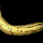 Reclining Banana  by Marvin Hayes