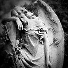 Midnight Angel by olga zamora