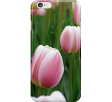 Tulips 9 iPhone Case/Skin