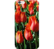 Tulips 11 iPhone Case/Skin