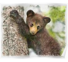 Bear in a Tree Poster