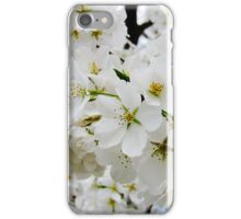Cherry Blossoms 3 iPhone Case/Skin