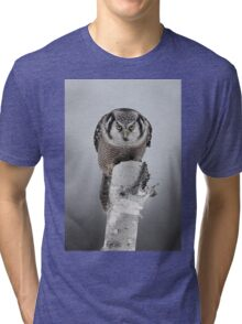 Northern Hawk-Owl Tri-blend T-Shirt