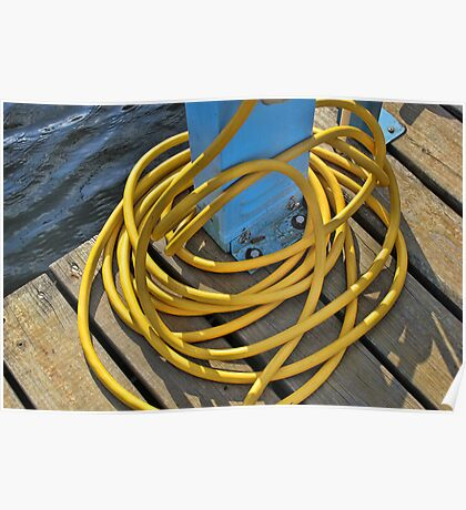 Yellow Dock Hose in the Sunshine Poster