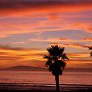 Sunset at Mandalay by Cheryl  Lunde