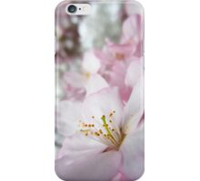 Cherry Blossoms 9 iPhone Case/Skin