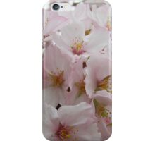 Cherry Blossoms 13 iPhone Case/Skin